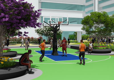 Play Area- Basketball Court